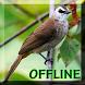 Kicau Burung Trucukan Gacor by Detarp Creative