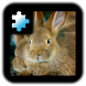 Jigsaw Puzzle: Rabbit by CoCoPaPa Soft
