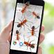 Ants on Screen Prank