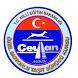 Ceylan Ehliyet Deneme Sınavı by Ertan TOLAN