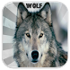 Wolf Sounds by Playappsinc.
