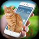 Cat on Screen - Cat in Phone Prank by Code Star Studio