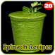 100+ Spinach Recipes by 28Apps Company