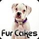 Fur Cakes - Apis by Amplitude Metamedia Corp.
