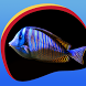 Neon Fish Live Wallpapers by Creativ Live Wallpapers