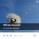 Natural Wind Sounds by SoundsLabStudio