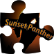 Sunset Panther