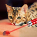 Laser Pointer Simulator Cat by Applicate7