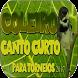 Coleiro Tui Tui Mestre by legend of bird