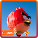 Guide Of Angry Birds Blast by PlayGuides Dev