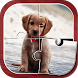 Cute Pets Jigsaw Puzzles by Kaya