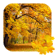 Beautiful Autumn Free Live Wallpaper by Acinis