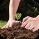 زراعة الخضروات-الزراعة المنزلية by ysaitapps