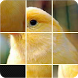 Pictures Puzzle Best Game by ANDROFLOWERS