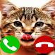 Fake Call Cat