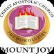 Mount Joy by Sharefaith