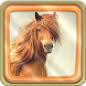 Horses Live Wallpaper by Fun Live Wallpapers