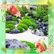 Modern Japanese Garden Design by aaron balder