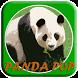 Bubble Panda Pop Ball by Abidah Games