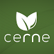 CERNE by Smartpublishing