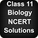 Class 11 Biology NCERT Solutions by Apps4India
