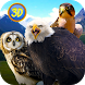 Wild Bird Survival Simulator by Wild Animals World
