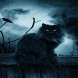 Rainy Cat Live Wallpaper by Daksh Apps