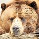 Bear Lock Screen Background by Plus Eleven Studio