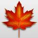 Canadian Citizenship Test 2016 by Asadullah Tanvir