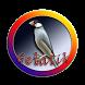 Kicau Burung Gelatik Terbaik by Silalahi App