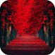 Red Wallpapers HD by PikasApps
