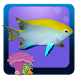 Freshwater Fish Counting Game by Online Game Free
