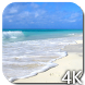 Paradise Video Live Wallpaper by Hubert Apps
