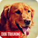 Dog Training by AlphaRay Apps
