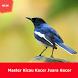 Master Kicau Kacer Gacor Juara by net-digitalplay