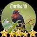 Canto de Garibaldi by jonn jeff