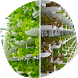 Agriculture Hydroponics by KingUps