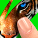 Scratch: Guess animal by VooApps