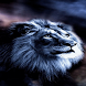 Lion Wind Live Wallpaper by Daksh Apps