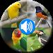 Terapi & Kicau Burung Terbaik by dwipdev