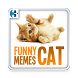 Funny Cat Memes 2017 by Tricipta