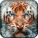 Angry Tiger Live Wallpaper by Zheka