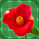 Flower Pelmanism by Yasukazu Umekita