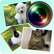【キャドラプカメラ】ペット(犬、ネコ、うさぎ)を撮影、装飾! by ライラック株式会社
