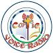Copt4G Coptic Voice Radio by Nobex Radio