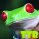 live wallpaper frogs by TTR