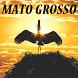 Maravilhas de Mato Grosso by Primeira Pagina Editora