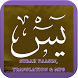 Surah Yaasin Translation MP3 by WadyNapps