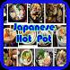Japanese Hot Pot by Jenny Nasir