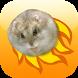 Hamster Basket by Etorki Games